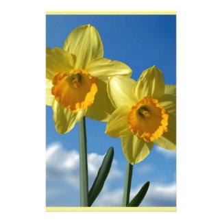 Papelaria Dois Daffodils amarelos 2,2