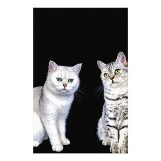 Papelaria Dois gatos britânicos do cabelo curto no fundo
