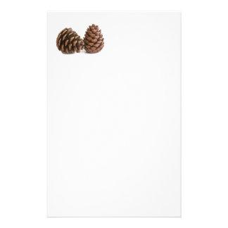 Papelaria Dois pinecones
