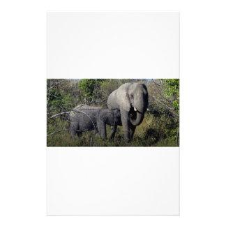 Papelaria Família do elefante africano