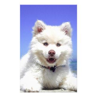 Papelaria Filhote de cachorro ronco branco com olhos azuis