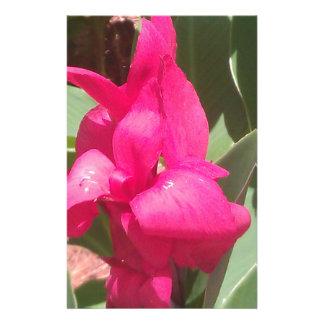 Papelaria Flor cor-de-rosa