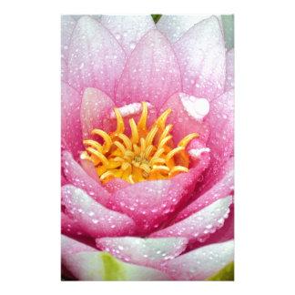 Papelaria Flor cor-de-rosa do lírio de água