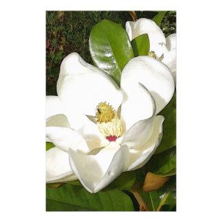 Papelaria Flor da magnólia