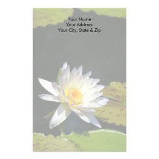 Papelaria Flor de Lotus branco Waterlily