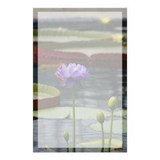 Papelaria Flor roxa de Lotus Waterlily