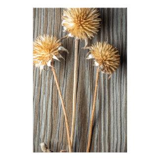 Papelaria Flor secada de Sun