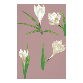 Papelaria Flores brancas do açafrão
