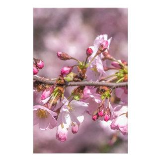 Papelaria Flores de cerejeira