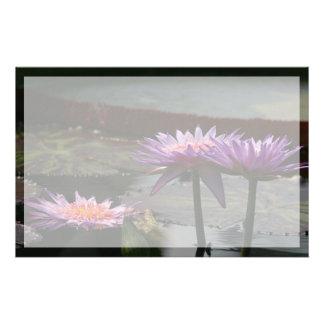 Papelaria Flores roxas de Lotus Waterlily