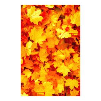 Papelaria Folhas de bordo