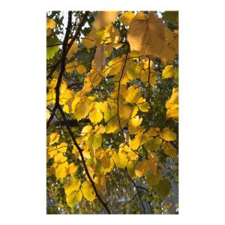 Papelaria Folhas de outono amarelas e verdes