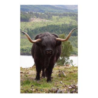 Papelaria Gado preto das montanhas, Scotland