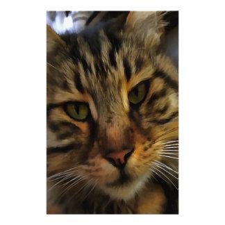 Papelaria Gato curioso