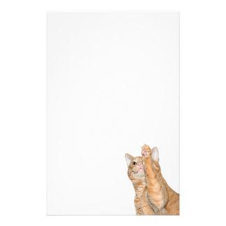 Papelaria Gato de gato malhado alaranjado brincalhão