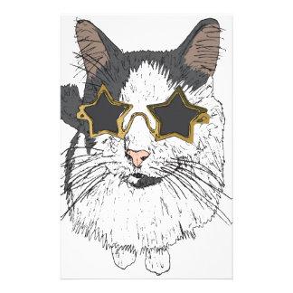 Papelaria Gato que veste vidros da estrela