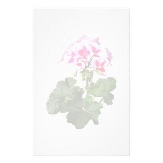 Papelaria Gerânio vermelho e cor-de-rosa
