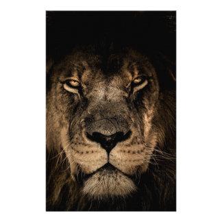 Papelaria Grande leão