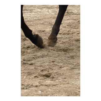 Papelaria Horse hooves