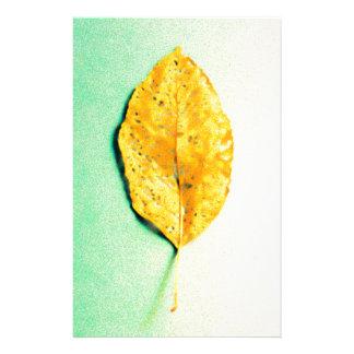 Papelaria Hortelã dourada por JP Choate