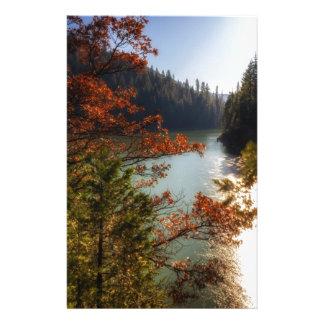 Papelaria Lago McCloud