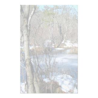 Papelaria Lagoa congelada dos pantanais