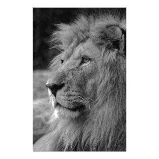 Papelaria Leão preto & branco - animal selvagem