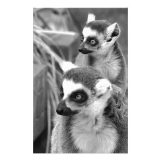 Papelaria lemur Anel-atado com o bebê preto e branco