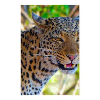 Papelaria Leopardo manchado