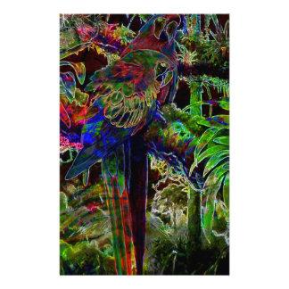 Papelaria Macaws no paraíso tropical na noite