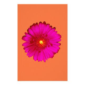 Papelaria Margarida do Gerbera do rosa quente na laranja
