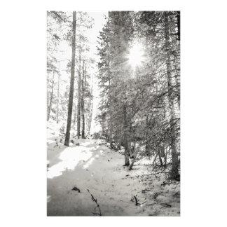 Papelaria Máscaras da floresta da luz do sol do inverno das