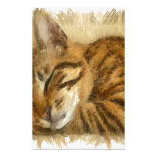 Papelaria Mentira deixada dos gatos do sono