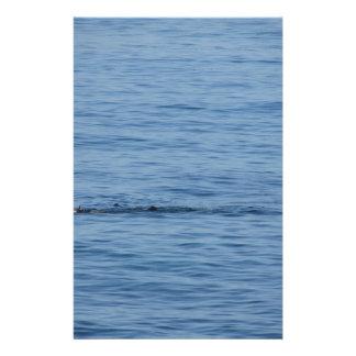Papelaria Mergulhador do mar na natação do terno do