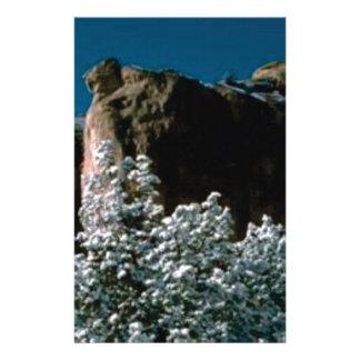 Papelaria neves do inverno no deserto