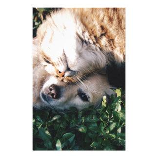 Papelaria O cão ama o gatinho