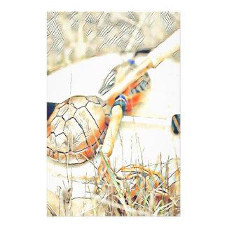 Papelaria O clã da tartaruga chocalha e rufa