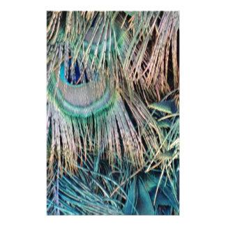 Papelaria O pavão empluma-se o verde e o azul de Tan