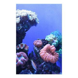 Papelaria ocean_one