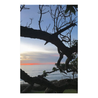 Papelaria Oceano & árvores