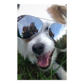 Papelaria Óculos de sol no FUTURO BRILHANTE do cão para MIM