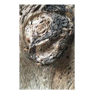Papelaria Olhos da árvore