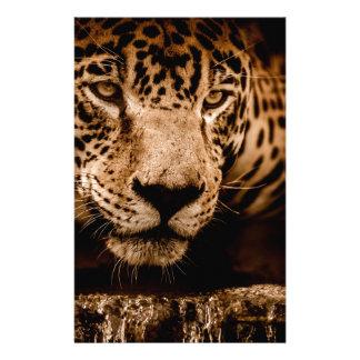 Papelaria olhos de desengaço da água do jaguar