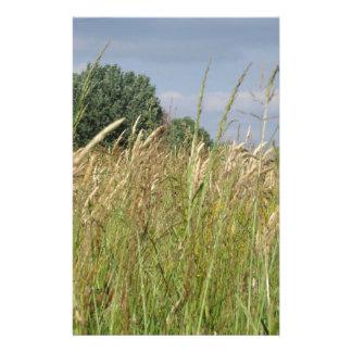 Papelaria Paisagem do verão do campo selvagem no campo