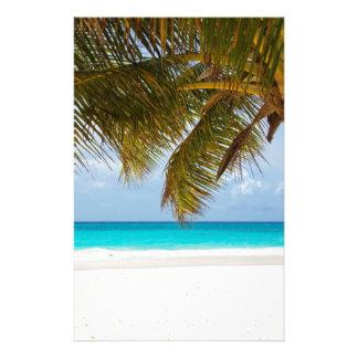 Papelaria Palmeira verde na praia durante o dia
