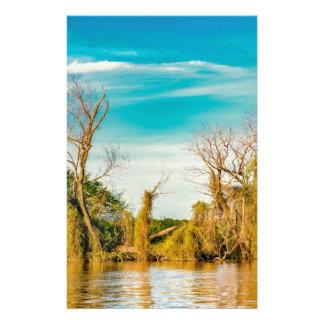 Papelaria Parana River, San Nicolas, Argentina