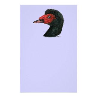 Papelaria Pato:  Cabeça de Muscovy