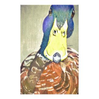 Papelaria Pato encantador