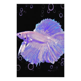 Papelaria Peixes de combate roxos iridescentes