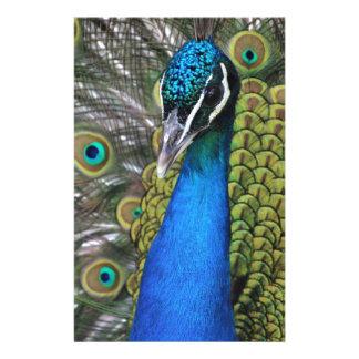 Papelaria Penas azuis e verdes brilhantes de w do pavão